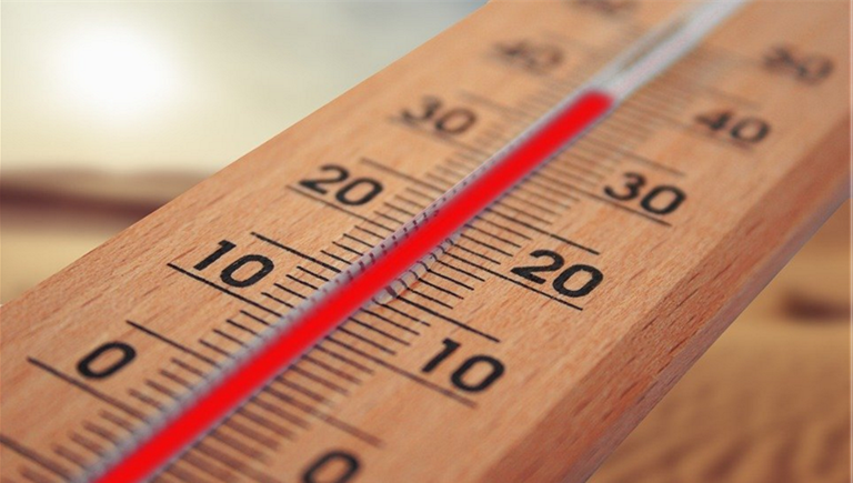 Image of a thermometer to indicate that temperature is critical when making sausage